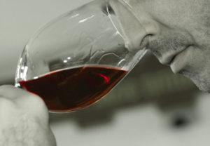 degustando Amarone, Valpolicella 2006, foto Orler